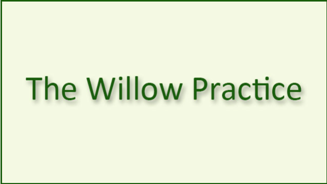 the-willow-practice_logo_201802081231046 logo