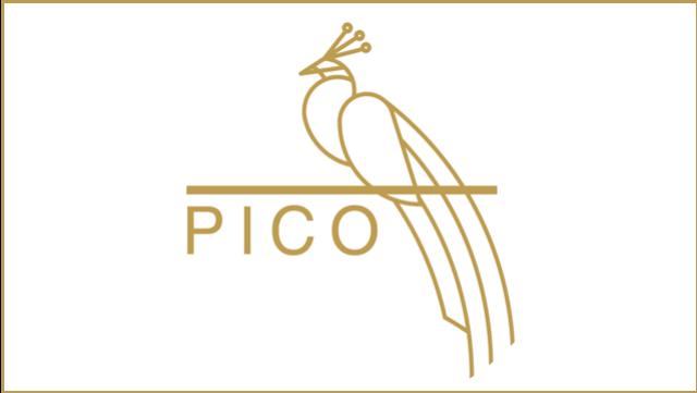 pico-clinics_logo_201907091150173 logo